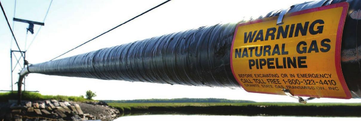 furnizare-gaze-naturale-Forte-Gaz-Energynomicx